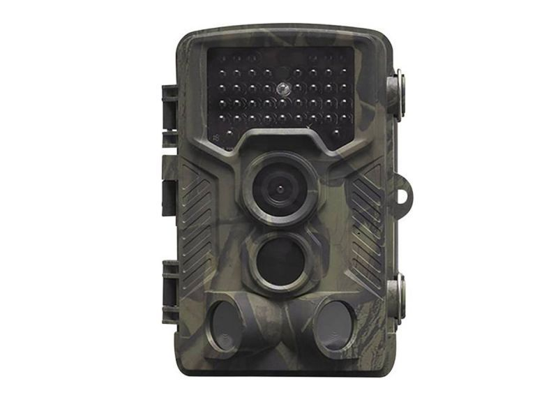 Camouflage camera